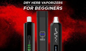 Types of Dry Herb Vaporizers for Beginners
