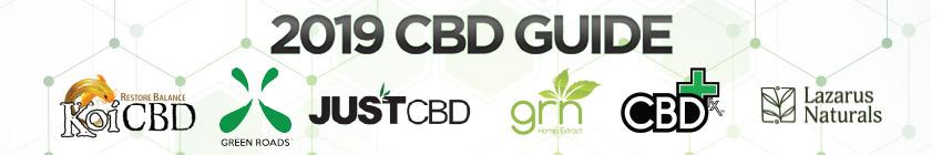 Best CBD Products 2019 - CBD Oil, Vape Juice & More