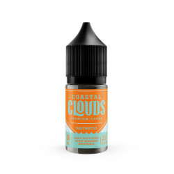 Iced Mango Berries Nic Salt by Coastal Clouds- 30 mL